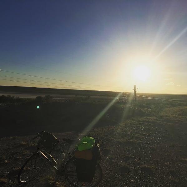 Sunset Pampas
